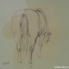 Arte: RAMÓN NOÉ HIERRO (BARCELONA 1923 - SABADELL 2007). Lote 116787955