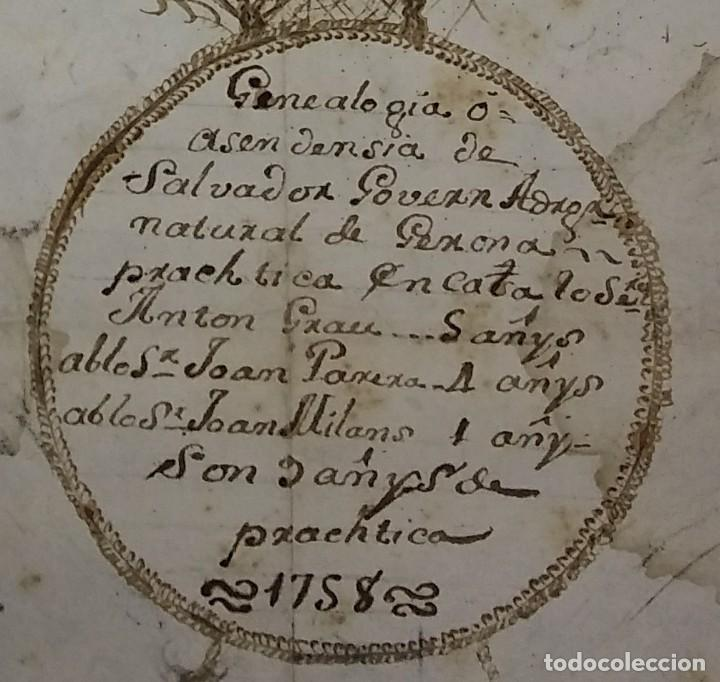 Arte: 1758 Árbol genealógico. Gerona. Girona. Familia Govern. Dibujo A Tinta. Siglo XVIII - Foto 6 - 117623611