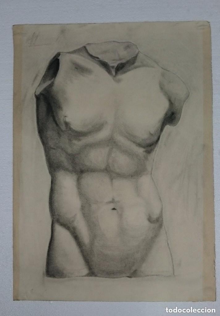 DIBUJO DE DESNUDO MASCULINO ESCULTURA CLÁSICA. .PINTADO AL CARBONCILLO. D (Arte - Dibujos - Contemporáneos siglo XX)