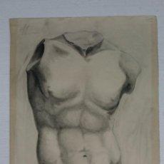 Arte: DIBUJO DE DESNUDO MASCULINO ESCULTURA CLÁSICA. AUTOR ALBERTO DUCE VAQUERO.PINTADO AL CARBONCILLO. D. Lote 122968531