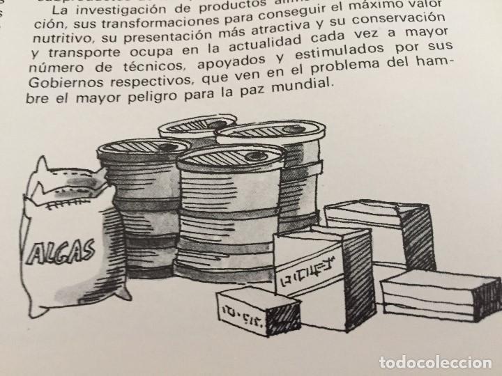 Arte: Dibujo de Boada para Libro de Cocina.1971 - Foto 2 - 125424379