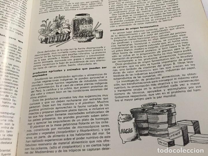 Arte: Dibujo de Boada para Libro de Cocina.1971 - Foto 3 - 125424379