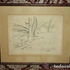 Arte: B2-058. PAISAJE. DIBUJO TINTA. Mª AUREA CATALÀ. DEDICADO A PERE ELIAS I BUSQUETA. 1972. Lote 128835379