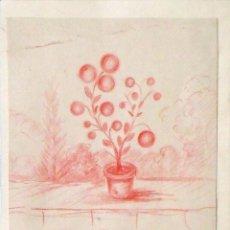 Arte: AURELI TOLOSA (1868-1938). DIBUJO EN LÁPIZ DE COLOR. TIESTO CON FLORES. FIRMADO A MANO. FINALES XIX.. Lote 133018630