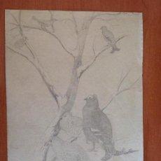 Arte: FEDERICO JIMÉNEZ. PERDICES.. Lote 134065394