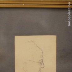 Arte: ANÓNIMO. ANTIGUO DIBUJO A LAPIZ, PERFIL MASCULINO, ESTUDIO DE CABEZA. ENMARCADO. 34X44CM. Lote 135833938