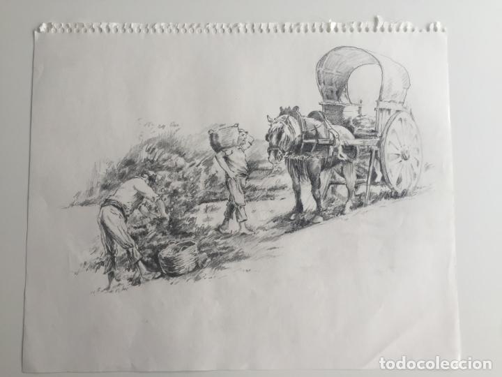 Arte: LOTE DE 2 DIBUJOS ORIGINALES A LÁPIZ DE C. AGUILAR , ESCENA RURAL - Foto 2 - 139940998