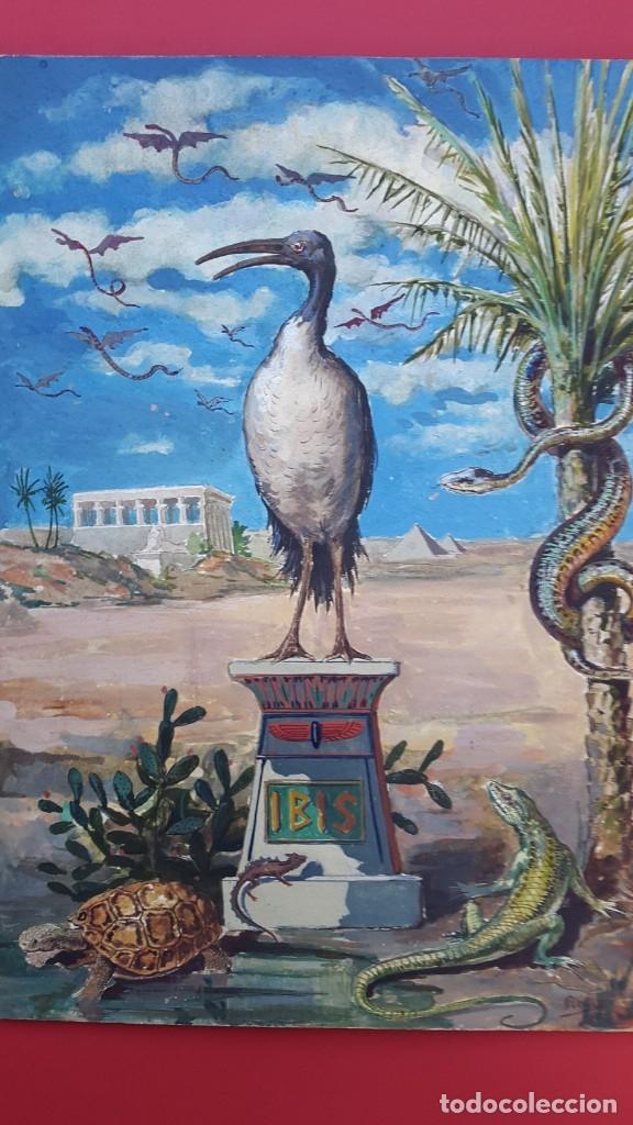 Arte: IBIS - ACUARELA Y TINTA - 1886 - Foto 2 - 148765266