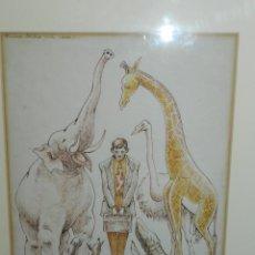 Arte: (M) DIBUJO ORIGINAL DE PRAT UBACH , QUINA BESTIA MES MACA !!! , ENMARCADO , MEDIAS DIBUJO 31'5X23CM. Lote 150749866