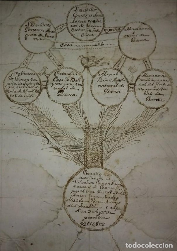 1758 ÁRBOL GENEALÓGICO. GERONA. GIRONA. FAMILIA GOVERN. DIBUJO A TINTA. SIGLO XVIII (Arte - Dibujos - Antiguos hasta el siglo XVIII)