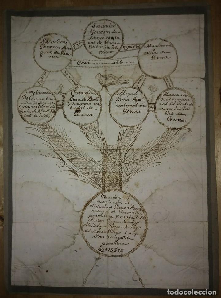Arte: 1758 Árbol genealógico. Gerona. Girona. Familia Govern. Dibujo A Tinta. Siglo XVIII - Foto 2 - 117623611