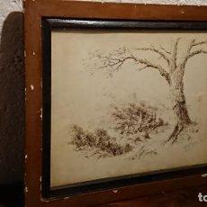 Arte: ANTIGUO DIBUJO DEL PINTOR FRANCISCO TARELLAS HECHO A PLUMILLA AÑOS 50 . Lote 152803606