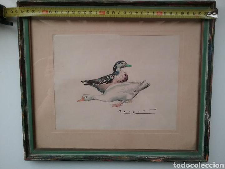 DIBUJO EN ACUARELA DE CARLOS BÉCQUER DOMÍNGUEZ 1889- 1968 DE PATOS. (Arte - Dibujos - Modernos siglo XIX)