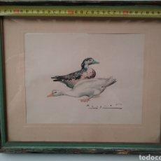 Arte: DIBUJO EN ACUARELA DE CARLOS BÉCQUER DOMÍNGUEZ 1889- 1968 DE PATOS.. Lote 153241002