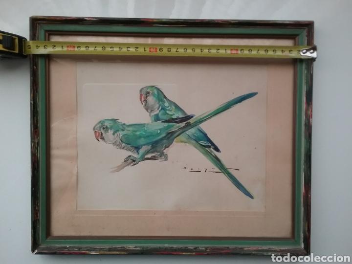 DIBUJO EN ACUARELA DE CARLOS BÉCQUER DOMÍNGUEZ 1889- 1968 DE PERIQUITOS. (Arte - Dibujos - Modernos siglo XIX)