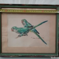 Arte: DIBUJO EN ACUARELA DE CARLOS BÉCQUER DOMÍNGUEZ 1889- 1968 DE PERIQUITOS.. Lote 153242737
