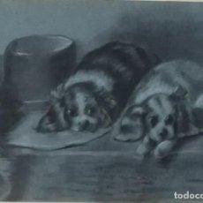 Arte: MANUEL AMAT, DIBUJO A CARBONCILLO DE DOS PERRITOS. FIRMA A LÁPIZ. Lote 155787670