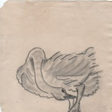 Arte - Dibujo original boceto de Enric C. Ricart. Cisne. 1926. - 156951126