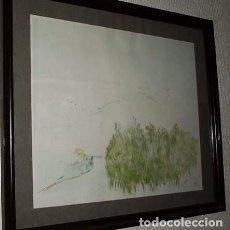 Arte: PAISAJE. SÁNCHEZ, JUAN PABLO. Lote 163502482