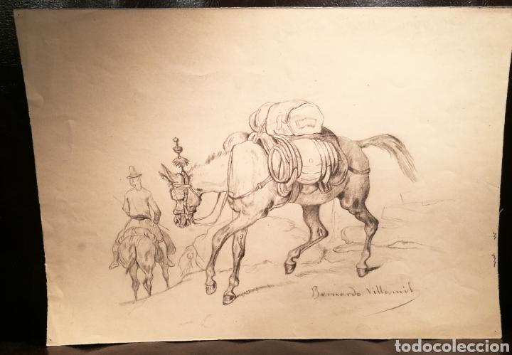 CABALLO POR BERNARDO VILLAAMIL MARRACI. CUBA. (Arte - Dibujos - Modernos siglo XIX)