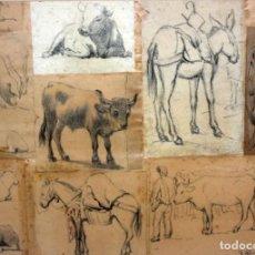 Arte: JAUME PONS MARTÍ (BARCELONA, 1855 - GIRONA, 1931) CONJUNTO DE 8 DIBUJOS A LAPIZ Y CARBON. Lote 166461898