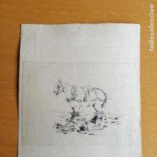 Arte: APUNTES DEL NATURAL E ILUSTRACIÓN DE TEMÁTICA EQUINA. PLUMILLA S.XIX. ¿CIRCULO FORTUNY?.. Lote 168488616