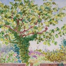 Arte: ÁRBOL Y JARDÍN. ACUARELA. ATRIB. JULIÁN DEL POZO Y LA ORDEN. ESPAÑA. XIX-XX. Lote 169574544