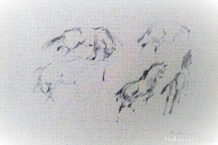 Arte: Ricard Arenys. Lote 10 dibujos originales - Foto 6 - 170095908