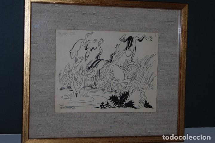 DIBUJO A TINTA - VALENTI CASTANYS - RANAS EN UNA CHARCA - ILUSTRACIÓN PARA LIBRO - AÑOS 40 (Arte - Dibujos - Contemporáneos siglo XX)