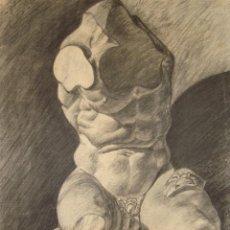 Arte: DESNUDO MASCULINO.TORSO DE BELVEDERE.. Lote 171265669