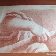 Arte: ANÓNIMO. SIGLO XVII-XVIII. ESTUDIÓ ANATÓMICO.. Lote 171782573