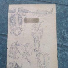 Arte: ÁNGEL LIZCANO. ESTUDIOS DE MULAS.. Lote 172945649