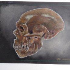 Arte: FOSSIL 1 - DIBUJO ORIGINAL, FIRMADO. A4. 29.5X21 CM.. Lote 176759888