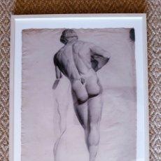 Arte: DIBUJO A CARBONCILLO. ESTUDIO DE FAUNO. SIGLO XIX. Lote 151200782