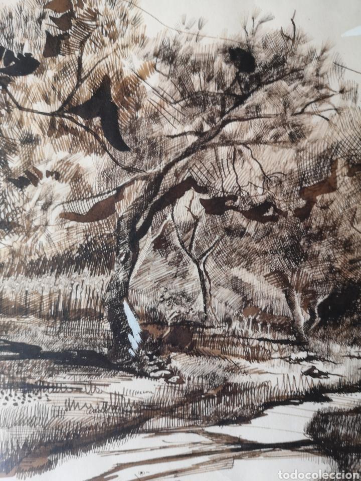 Arte: Dibujo a tinta y acuarela, autor alicantino, firmado, enmarcado mide 42x52cm - Foto 3 - 180014526