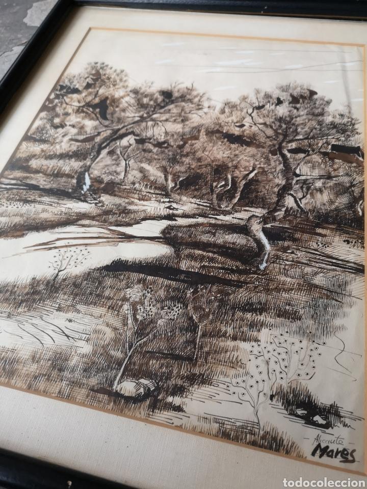 Arte: Dibujo a tinta y acuarela, autor alicantino, firmado, enmarcado mide 42x52cm - Foto 6 - 180014526