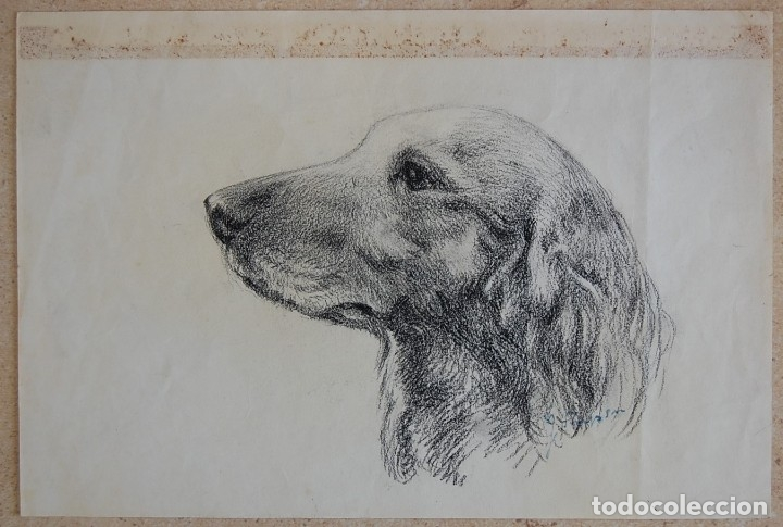 Arte: Colección de Perros - 1930's: Pastor Alemán, Golden Retriever, Corgi, Boxer y Spaniel - Foto 12 - 181467122