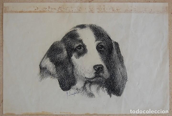 Arte: Colección de Perros - 1930's: Pastor Alemán, Golden Retriever, Corgi, Boxer y Spaniel - Foto 15 - 181467122