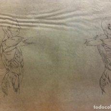 Arte: LÁMINAS ANATOMÍA HUMANA. MEDIDAS 28 X 21. Lote 189618321
