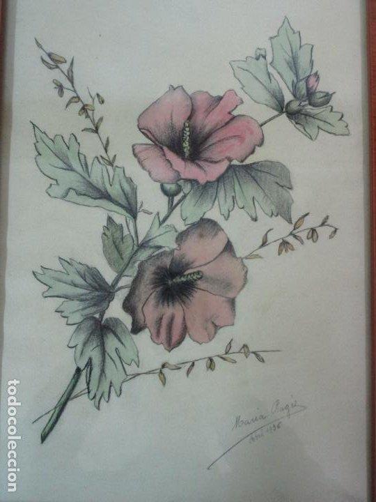 Arte: Dibujo a Lápiz - Flores - Firma María Ragés, Abril 1936 - con Bonito Marco - Foto 4 - 190830487