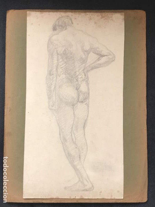 DOBLE DIBUJO A LÁPIZ TORSO MASCULINO 1920'S. ANÓNIMO. (Arte - Dibujos - Contemporáneos siglo XX)
