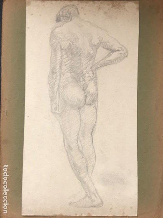 Arte: DOBLE DIBUJO A LÁPIZ TORSO MASCULINO 1920'S. ANÓNIMO. - Foto 2 - 194273103