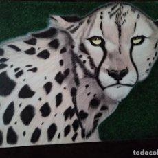 Arte: DIBUJO HIPERREALISTA. GUEPARDO ESTUDIO DE CABEZA. (TM). D. NAVASCUES.. Lote 194872976