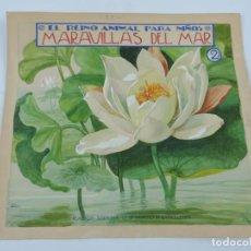 Arte: ACUARELA ORIGINAL DE LUIS PALAO, PARA LA PORTADA DEL CUENTO EL REINO ANIMAL PARA NIÑOS, MARAVILLAS D. Lote 195185593