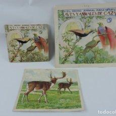 Arte: ACUARELA ORIGINAL DE LA PORTADA DEL CUENTO AVES Y ANIMALES DE CAZA 3, ILUSTRADOR LUIS PALAO, JUNTO C. Lote 195275581