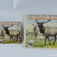 Arte: ACUARELA ORIGINAL DE LA PORTADA DEL CUENTO AVES Y ANIMALES DE CAZA 2, ILUSTRADOR LUIS PALAO, JUNTO C. Lote 195275847