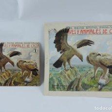 Arte: ACUARELA ORIGINAL DE LA PORTADA DEL CUENTO AVES Y ANIMALES DE CAZA 1, ILUSTRADOR LUIS PALAO, JUNTO C. Lote 195276125