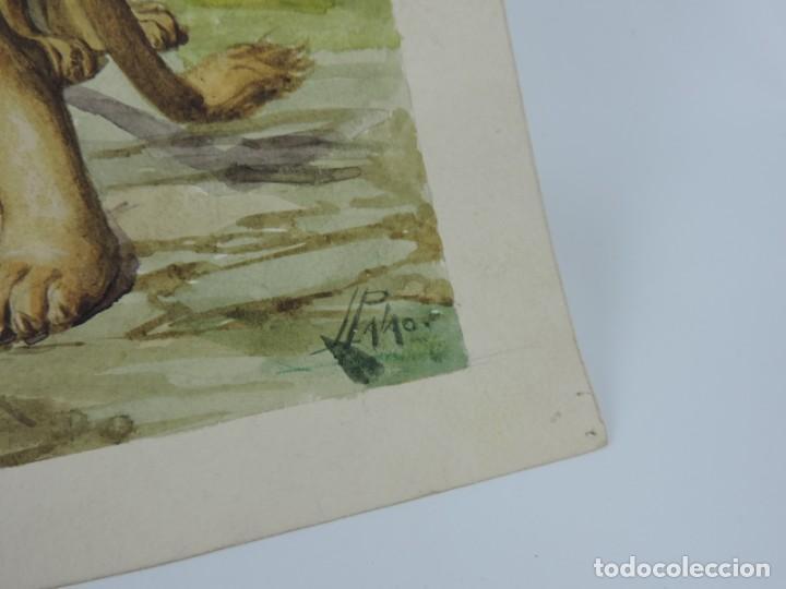 Arte: Acuarela original de la portada del cuento Animales Dañinos 3, ilustrador Luis Palao, junto con el c - Foto 3 - 195355805