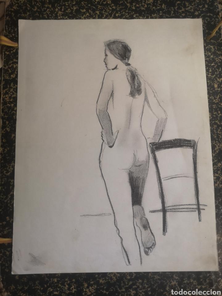 DESNUDO FEMENINO, DIBUJO A CARBONCILLO. SIN FIRMAR. 35X27CM (Arte - Dibujos - Contemporáneos siglo XX)