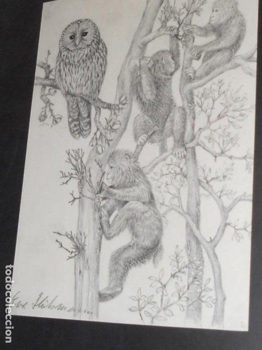 Arte: CUADRO DE DIBUJO DE ANIMALES FIRMADO - Foto 9 - 195874851
